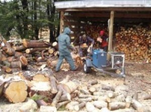 Firewood Workparties